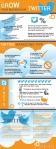 twitter-infographic_523c766565078